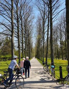 Celle-Franz.Garten2