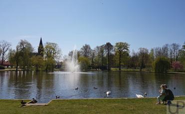 Celle-Franz.Garten4